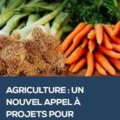 Agriculture : appel à projets pour développer les circuits courts
